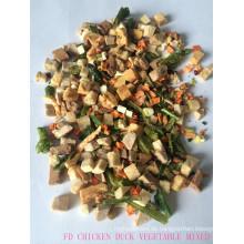 Einfrieren der getrockneten Mischung Obst Gemüse Hundefutter