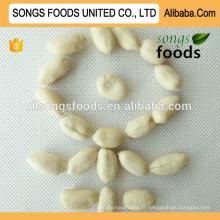 Grains de cacahuètes blanchis meilleure qualité et vente chaude