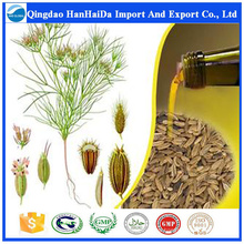 Hot sale & hot cake high quality nature essential Fennel Seed Oil / Foeniculum Oil with reasonable price and fast delivery !!