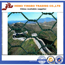 Certificat ISO9001 Fabricant Rust Proof Hexagonal Wire Mesh