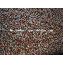 Chinese chestnut supplier
