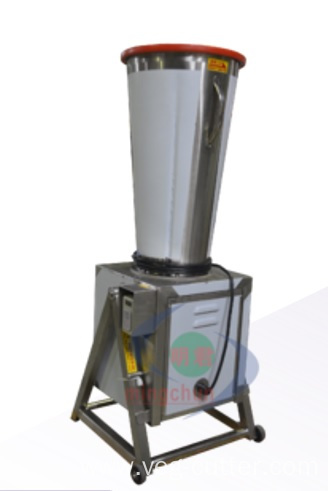 Two-Speed Fruit Juicer