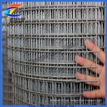 Galvanisierter geschweißter Maschendraht ISO9001 Anping Facotry
