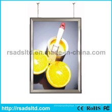 Doubled Sides LED Advertising Display Light Box