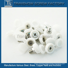 Flat Head Pan Head Countersunk Head Screw Plastic Caps