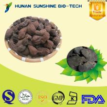 Hierba china natural 100% Polygonum multiflorum rebanadas