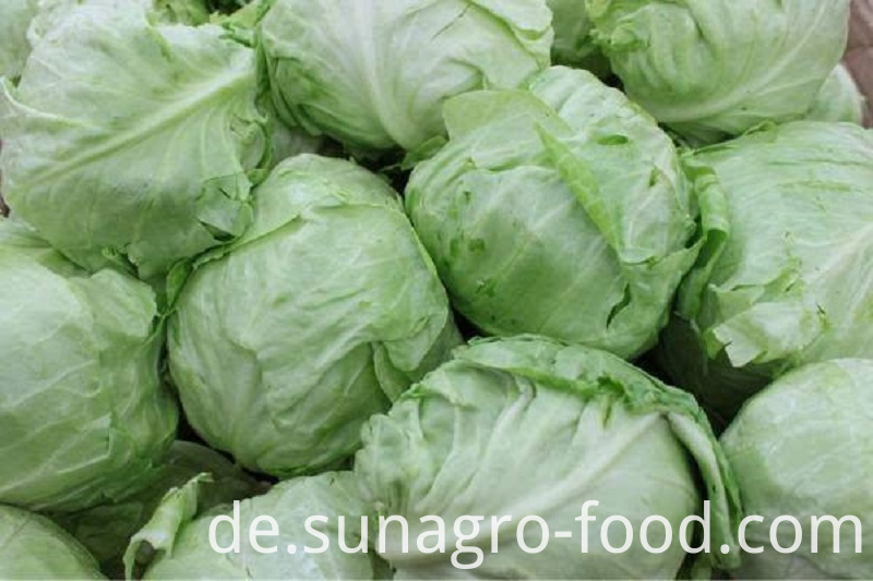 Fresh Frozen Cabbage