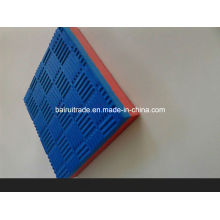 High Density EVA Foam Interlocking Jiujitsu Mat for Gymnastic Sports