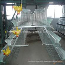 Huaxing alta calidad Q235 jaula de jaula de pollo de material / capa