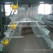 Huaxing haute qualité Q235 matériel cage de poulet / cage de couche