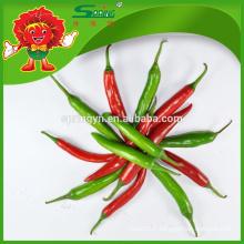 2015 Hotsale Green chili