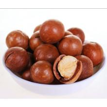 Орех макадамия в скорлупе, оптом орехи макадамии