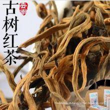 Antiga de chá árvore grau 1 chá preto com beleza e saúde