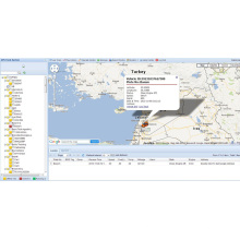 GPS-Tracking-System mit kostenloser Software (TS05-KW)