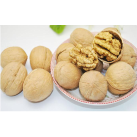 Hot gifted class Chinese walnut shell