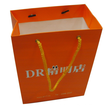 Customized Colour Print High Quality Paper Shopping Gift Bag