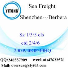 Shenzhen Port Mer Fret maritime à Berbera