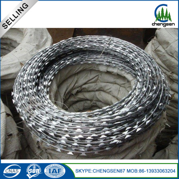 First Class 316 Razor Barbed Wire para granja