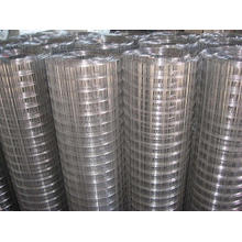 """3/8"""" to 200mm Galvanized Welded Wire Mesh in Roll"""