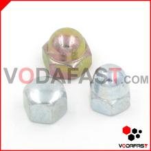 Steel Hex Domed Cap Nuts