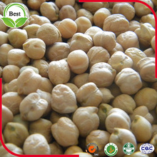 Chinese Origion 7mm 8mm 9mm 10mm 12mm Kabuli Chickpeas