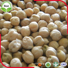 Wholesale Cheap Chickpeas