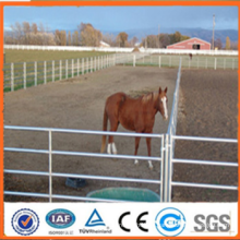 2015 vente chaude Panneaux galvanisés à chaud pour jardin d'élevage pour bétail / mouton / chèvre (fabricant professionnel)