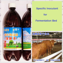 seaweed Bio Preparate Specially for making Ferment Bed