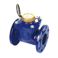 "Detachable Woltman Water Meter (2"" to 8"")"