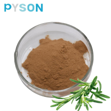 Herbal extract Rosemary extract