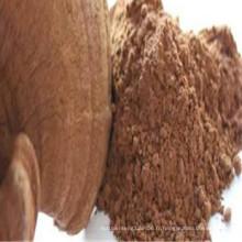 Reishi poudre de spores de champignons