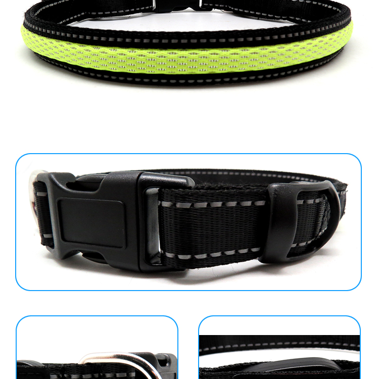 Dog Collar Nylon