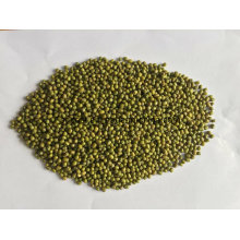 3.2mm 3.6mm 3.8mm Green Mung Beans