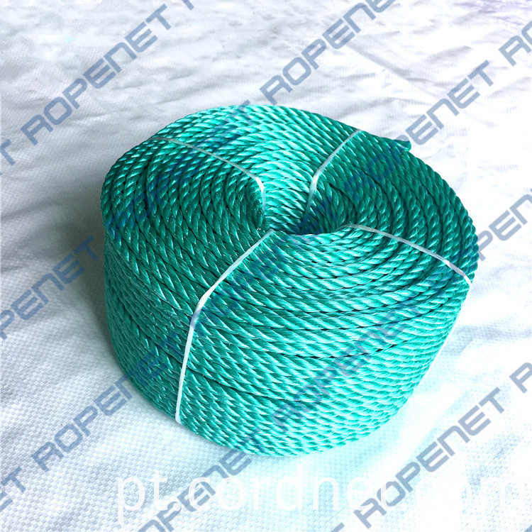 Pp Danline Rope 6mm 110m 24