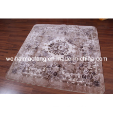 Raschel Mink Polyester Shaggy Decoration Carpet (NMQ-CPT013)