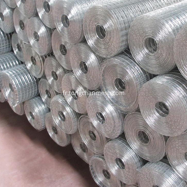welded wire mesh net