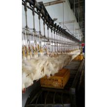 Línea aérea de línea de procesamiento de aves.