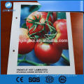 Fabricant UV impression pvc flex bannière machine de laminage