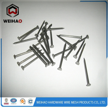 common iron steel nails