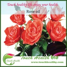 2016 Touchhealthy supply Natural 100% organic rose essential oil