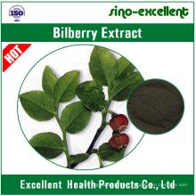 Extracto de arándano (Vaccinium Myrtillus L.)