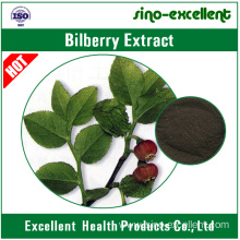High Definition for 7-Ethylcamptothecin Bilberry extract (Vaccinium Myrtillus L.) export to Greenland Manufacturers