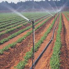 Sprinkling Irrigation Sprinkler Irrigation Hose for Farm Irrigation System