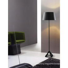 Modern Matt Black Metal Floor Lighting for Livingroom (ML20096-1-500)