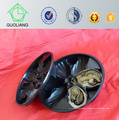 China Made Popular Wholesale Ireland USA Market Customized Design Plastic Oyster Boxes, Oyster Tray in Restaurant