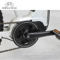 Elektrisches Mountainbike 36V 250W Suspendierung mit bafang 8fun mittlerem Motorchinesen