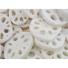 IQF Frozen Lotus Root Prices Supplier from China