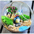 Hanging Glass Globe Ball Plant Glass Terrarium