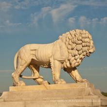 Paisagismo alta qualidade decoração mármore leão estátuas vida tamanho