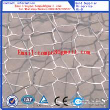 Покрынная PVC и Гальванизированная Шестиугольная Ячеистая сеть